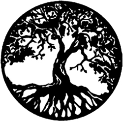 Large Oak Tree Logo