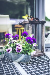 Flowers and Lantern - Outdoor Decorations