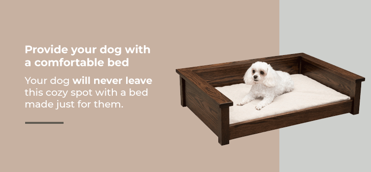 Provide your dog with a comfortable bed